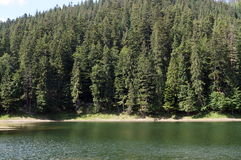 Lake near the high mountains under the blue sky. Covered with green forest Royalty Free Stock Photography