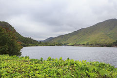 Lake near the Kylemore Abbey. Stock Image