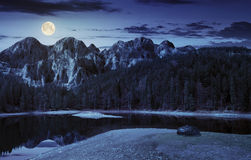 Lake near the mountain in pine forest at night Royalty Free Stock Images