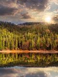 Lake near the mountain in pine forest at sunset Stock Images