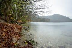 Lake near the Neuschwanstein castle in Germany. Stock Image