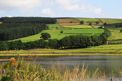 Lake near Pately Bridge North Yorkshire royalty free stock image