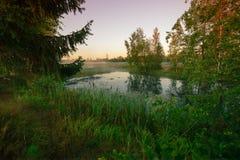 Lake near the road Stock Image