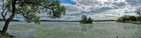 Lake near Sigtuna Royalty Free Stock Image
