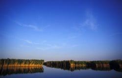 Lake Neusiedl in Austria Stock Images