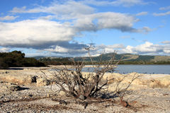 Lake in New Zealand royalty free stock images