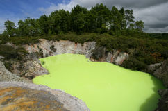 Lake Ngakoro in New Zealand. Strange green water of Lake Ngakoro in Rotorua, New Zealand stock photography