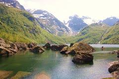 Lake. Nice lake in norwegian nature Royalty Free Stock Images