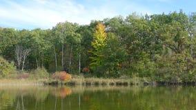 Lake. Nice lake somewhere in wisconsin usa royalty free stock image