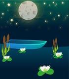 Lake night boat plants illustration Stock Images