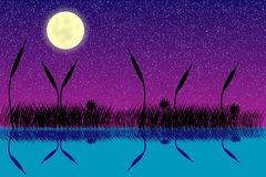 Lake night scene. With grass silhouette Royalty Free Stock Image