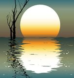 Lake. A night scene. A vector illustration Royalty Free Stock Photo