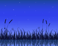 Lake Night Scene With Grass Silhouette. Illustration of Lake Night Scene With Grass Silhouette Royalty Free Stock Photography