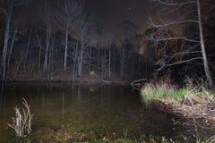 Lake Norman Cove. A cove on Lake Norman, NC at night Royalty Free Stock Image