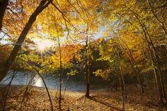 Lake Norman Royalty Free Stock Image