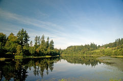 A lake in northumberland. A view of the lake at cragside estate Royalty Free Stock Images