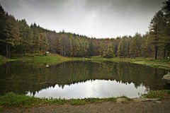 Lake of nynph. In italy Royalty Free Stock Images