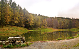 Lake of nynph. In italy Royalty Free Stock Photo