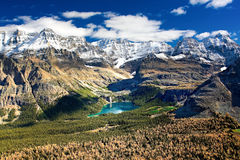 Lake O`Hara. The best place on Earth to be in: Lake O`Hara, in Yoho National Park Stock Photos