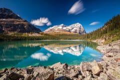 Lake O`Hara Daydream Stock Photography