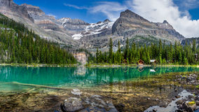 Lake O`Hara Panorama Royalty Free Stock Images