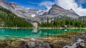 Lake O`Hara Panorama. Yoho National Park, British Columbia Royalty Free Stock Images