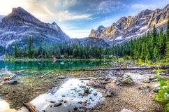 Lake o'Hara Royalty Free Stock Photos