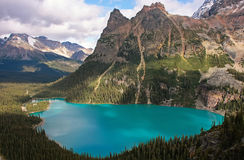 Lake O'Hara, Yoho National Park, Canada stock images