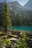 Lake O'Hara, Yoho National Park, Canadian Rockies, British Colum. Bia Royalty Free Stock Photography