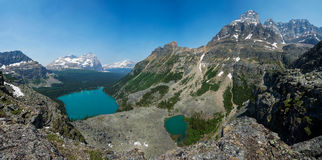 Lake O'Hara, Yukness Lake, Odaray Mountain & Wiwaxy Peaks in Yoh Stock Photos