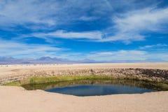Lake oasis in Atacama, Chile Royalty Free Stock Images