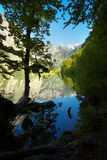Lake of Obersee, Berchtesgaden , Germany Stock Image