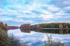 Lake och trees Royaltyfri Bild