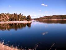Lake och trees Royaltyfria Bilder