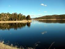 Lake och trees Royaltyfri Foto