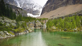 Lake Oesa,Yoho National Park Stock Images