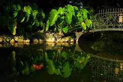 lake ogrodu Obrazy Royalty Free