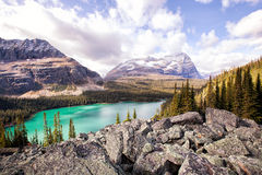 Lake Ohara. An image from the trail of lake osea high above the shores of the popular Lake Ohara. In british columbia, canada Stock Images