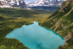 Lake Ohara, Yoho national park Stock Photo