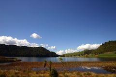Lake Okareka Royalty Free Stock Photography