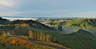 Morning green hills of North Island, New Zealand. stock images