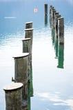 At the lake Royalty Free Stock Photography