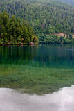 Lake in Olympic National Park Stock Image