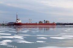 Lake Ontario в зиме Стоковая Фотография