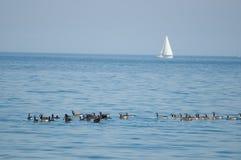 Lake Ontario Royalty Free Stock Photos