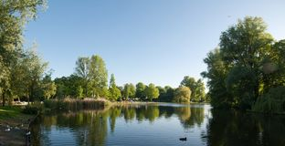 Lake in Oosterpark Royalty Free Stock Photos