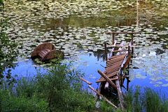 Lake overgrown and dilapidated wharf for boats. Lake overgrown with green duckweed and dilapidated wharf for boats Stock Images