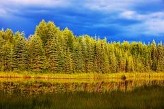 Lake på Alaska Royaltyfri Foto