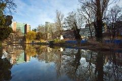Lake på den Eschersheimer anlagen Arkivfoto