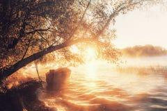 Lake på gryning royaltyfria foton